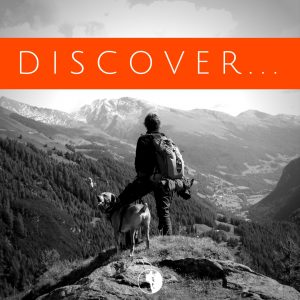 Dare Greatly Coaching | Mini-Course Discover