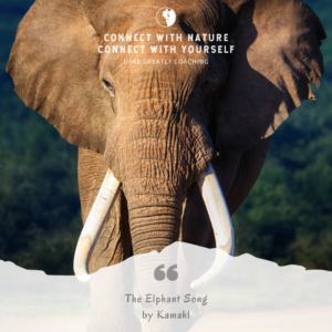 The Elephant Song by Kamahl