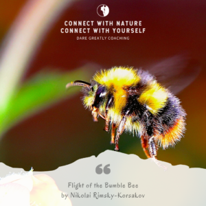 Flight of the Bumble Bee by Nikolai Rimsky-Korsakov