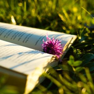 Books celebrating Nature